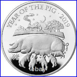2019 Royal Mint £2 pounds one ounce 999 silver Year of the Pig unc in capsule